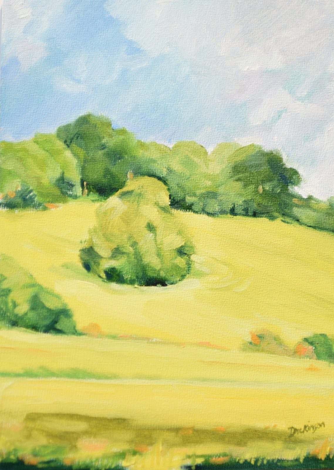 Crop Field, Nr. Groombridge